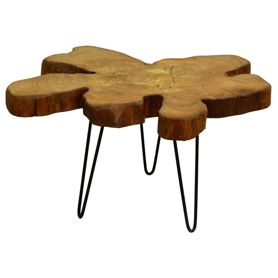 Elm Tree Coffee Table with Hairpin Legs from 1stDibs